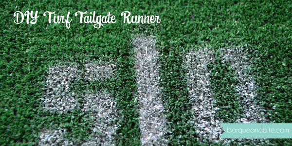 turf-feature-image