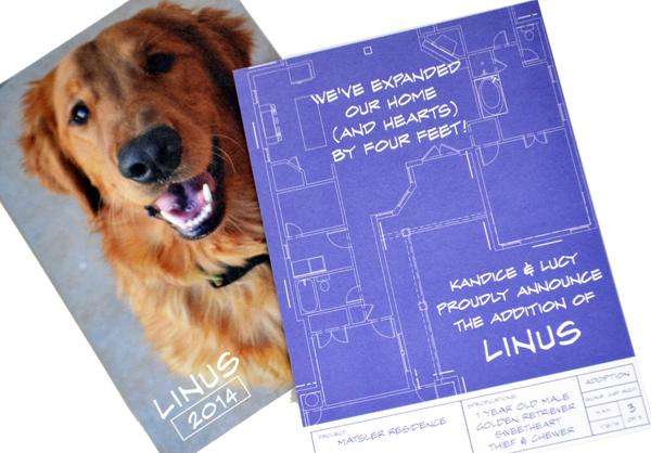 linus announcement sm