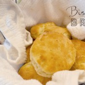 biscuit-feature-image